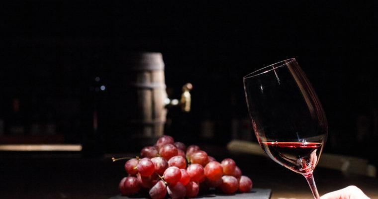 Principais diferenças entre os vinhos Cabernet, Merlot e Malbec
